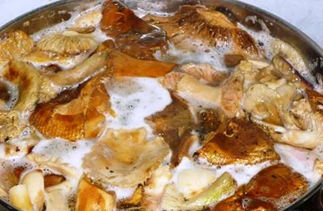 Промойте и отварите грибы в течение 15 минут.
