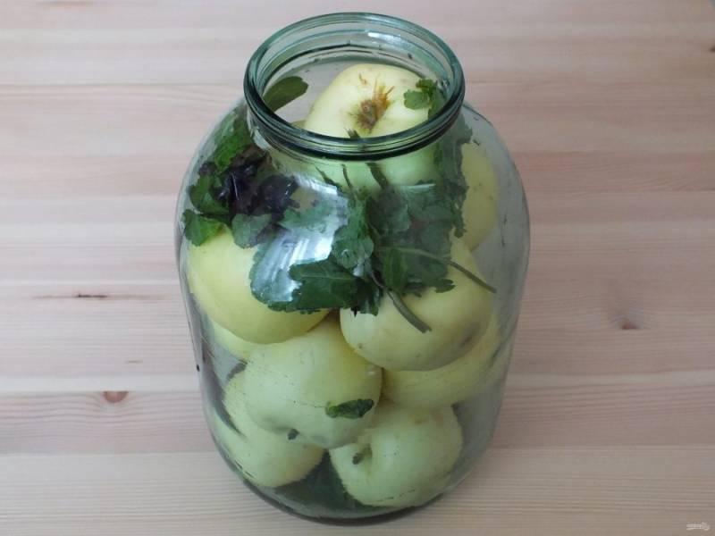 На дно трехлитровой банки положите 1/2 указанного количества мяты, базилика и корицы. Заполните банку яблоками, сверху положите остатки мяты, базилика и корицы.