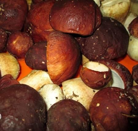 1. Готовить белый гриб одно удовольствие, а его вкус несравним ни с какими другим грибами. Итак, отбираем самые красивые грибы.