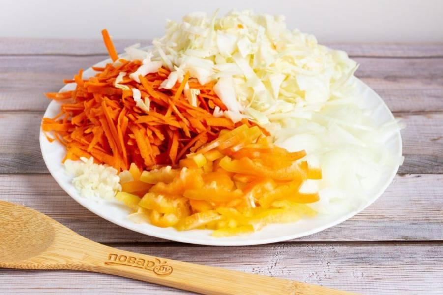Овощи хорошо помойте и очистите. Капусту нашинкуйте. Если капуста не молодая, то немного помните руками. Лук нарежьте полукольцами, морковь натрите на крупной терке, перец нарежьте соломкой, чеснок мелко порубите.