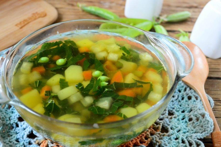 Подавайте вегетарианский суп из крапивы горячим, с черным хлебом или сухариками. Приятного аппетита!
