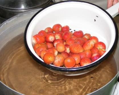 Землянику очищаем и тщательно промываем. Складываем ягоды в силиконовую форму, заливаем желе. Ставим форму в холодильник для застывания.