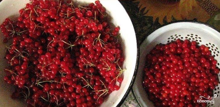 Берем полтора килограмма калины, очищаем ее от плодоножек, мусора и кладем в дуршлаг, пять минут держим ее над паром. Горячие ягоды перетираем через сито в кастрюлю или в эмалированную посуду.