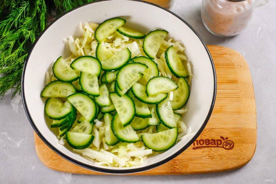 Свежий огурец промойте в воде, срежьте с овоща хвостики и нарежьте полукольцами. Добавьте в емкость к капусте.