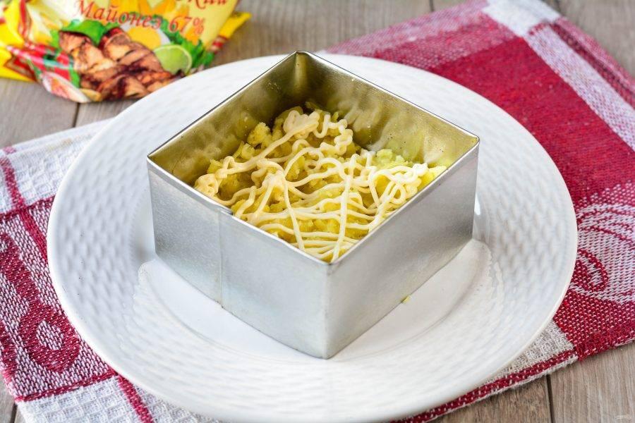 Выложите первым слоем картошку и полейте майонезом. Добавьте по вкусу соль.