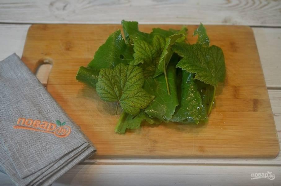 1. Промойте и обсушите листья.
