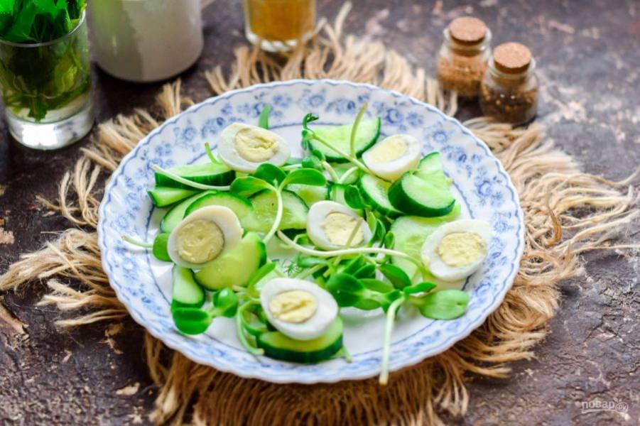 На тарелку разложите микозелень или любой салат по вкусу, добавьте яйца и огурцы.