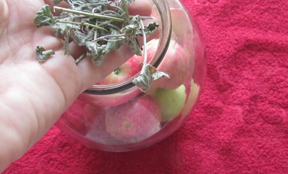 4. Добавляем несколько веточек мяты. Вместо нее по желанию можно добавить гвоздику, ваниль или палочку корицы.