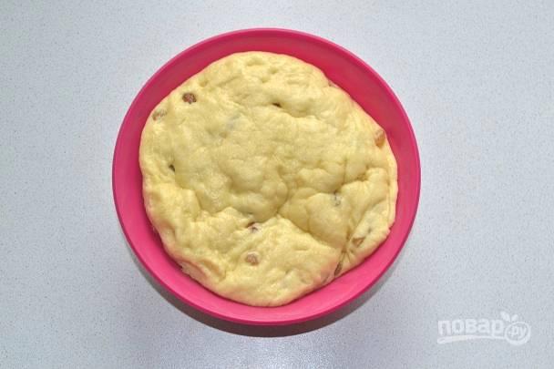 После первого подхода обязательно обомните тесто и дайте ему подойти еще разок.