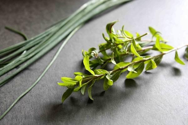 2. Для аромата можно использовать любую свежую зелень, которая есть под рукой. Прекрасно подойдет сюда укроп, петрушка, зеленый лук, тархун. Зелень вымыть, просушить слегка и измельчить.