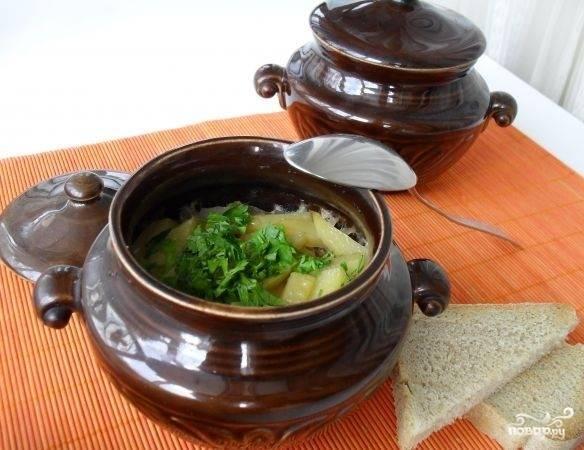 Готовое блюдо украшаем свежей зеленью и прямо в горшочке подаем к столу.