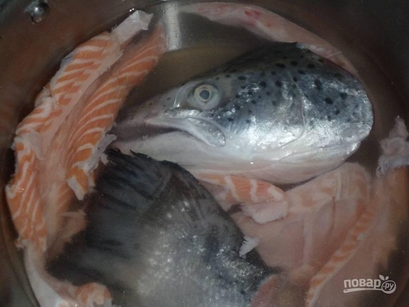 Возьмите рыбу, которую вы будете использовать, промойте ее. Отлично для ухи подходят хребты, плавники и головы рыб. Вкусная уха получается из семги или форели. Положите рыбу в кастрюлю, залейте её чистой водой. Варите двадцать минут.