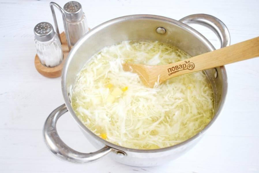 Добавьте в кастрюлю, варите до готовности капусты.