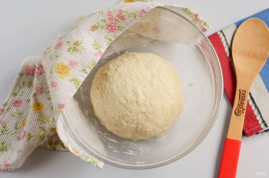 Выложите тесто в миску, накройте полотенцем и уберите в тепло на 1,5 часа.