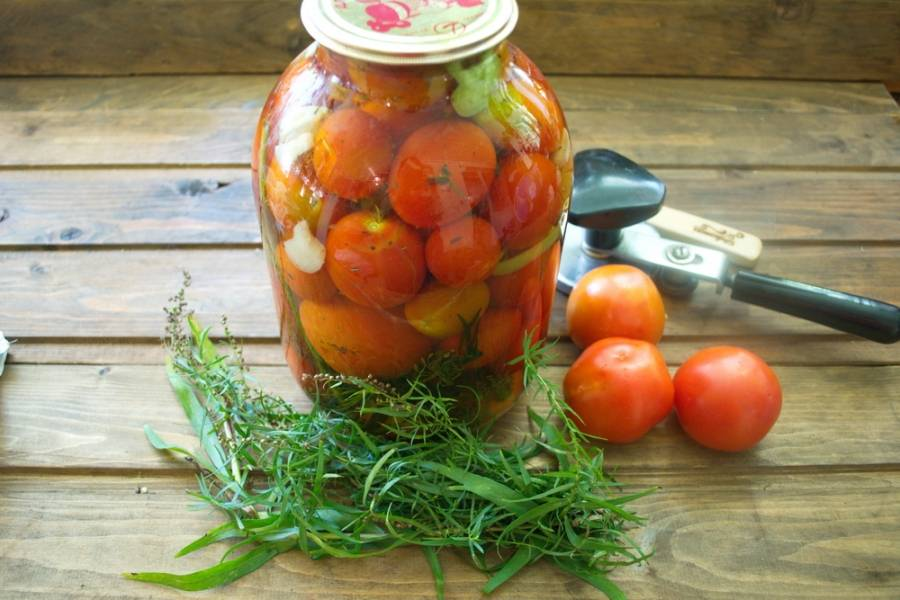 Вот такие помидоры у нас вышли.