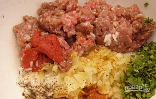Теперь возьмите фарш (его можно купить уже готовым, а можно сделать самостоятельно, прокрутив через мясорубку в равных частях свинину и говядину), положите его в миску. Добавьте к нему обжаренный лук, измельченную петрушку, рис, немного томатной пасты. Посолите и поперчите. Перемешайте все ингредиенты. Ваша начинка для перца готова.