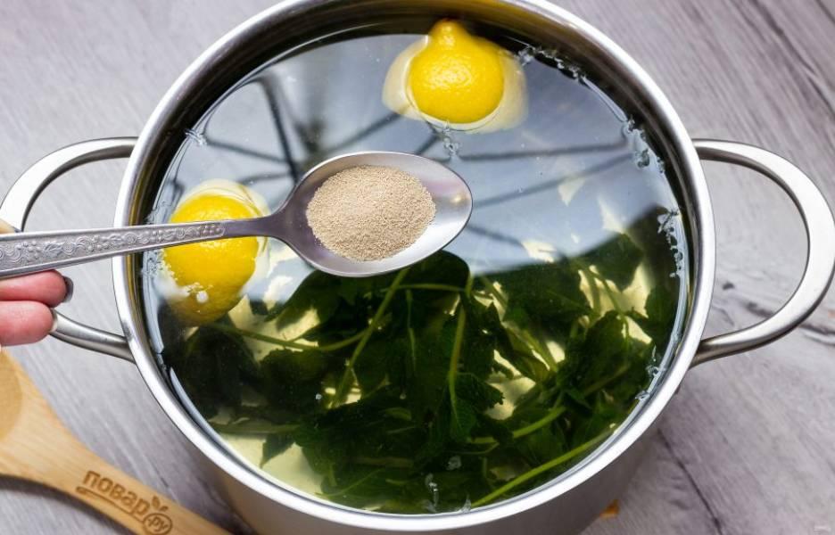 Когда вода станет теплой (тепло приятное для пальца, не обжигающее), добавьте дрожжи. Размешайте и оставьте на 5-6 часов. Затем процедите в бутылки, охладите и подавайте с кружочками лимона и листиками мяты.