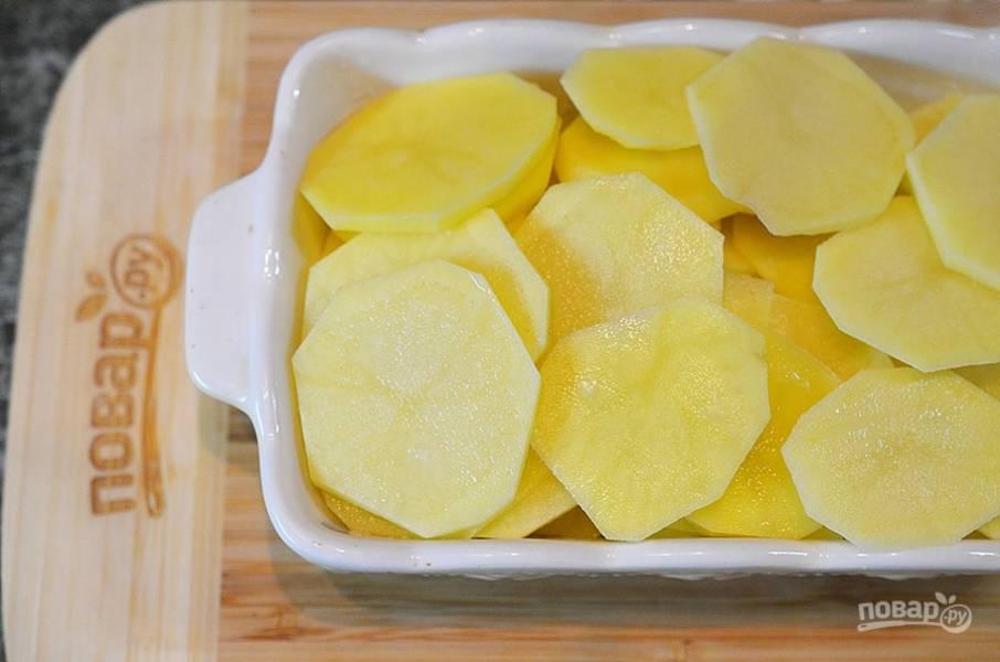 2. Выложите кружки картофеля в смазанную маслом жаропрочную форму.