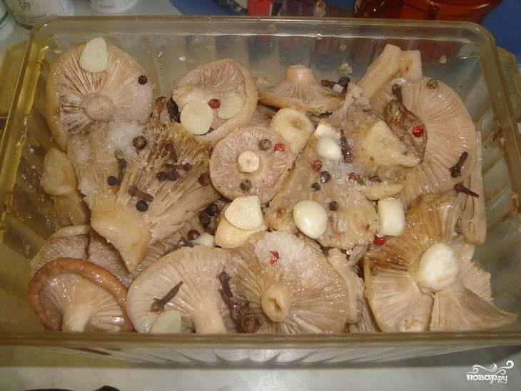 Сложите слоями грибы (шляпками вниз), соль, перец и чеснок.