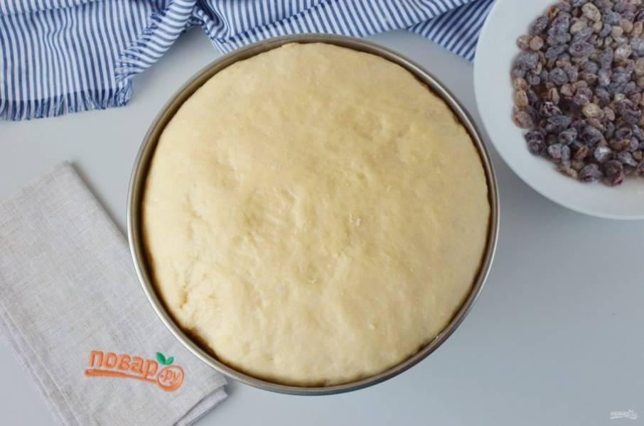 Через час тесто очень хорошо поднимется, увеличится раза в три точно.