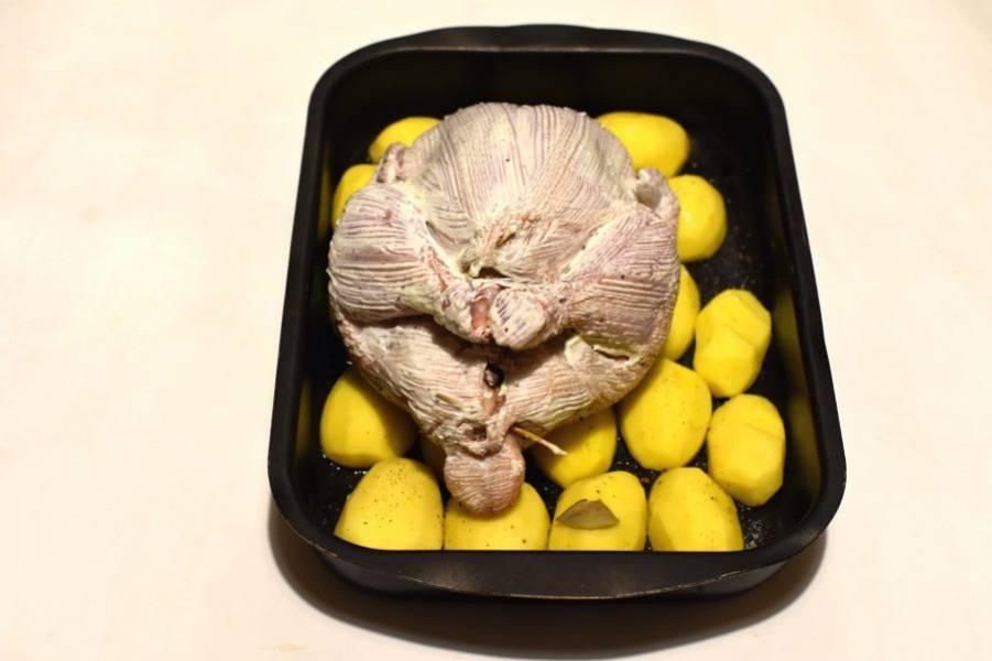 Чтобы получить гарнир вместе с курицей, уложите в форму для запекания картофель четвертинками, посолите его и добавьте любимые пряности. Сверху уложите курицу и смажьте ее сверху подсоленной сметаной.