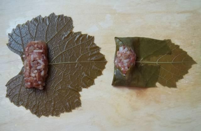 4. Добавьте в фарш половину количества кориандра, соль, паприку, перемешайте. Листья выложите на донышко, возьмите немного начинки и выложите на центр листика.