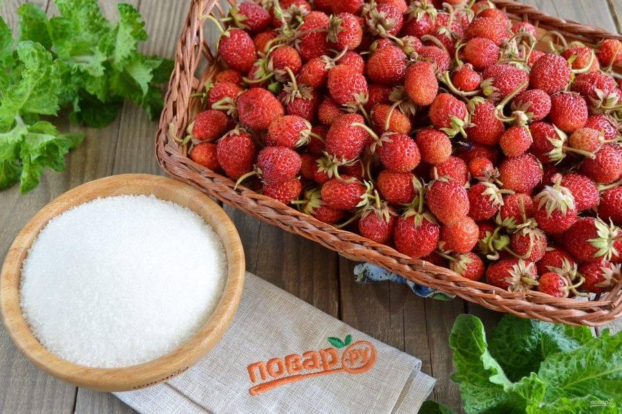 Подготовьте все необходимое для консервации: свежие ягоды, сахар. Приступим!