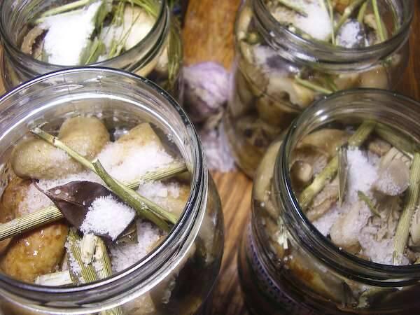 3. На дно баночек выкладываем все оставшиеся приправы и специи. Закладываем грибы и заливаем горячим маринадом. Сверху - по 1 ст. ложке соли на банку.