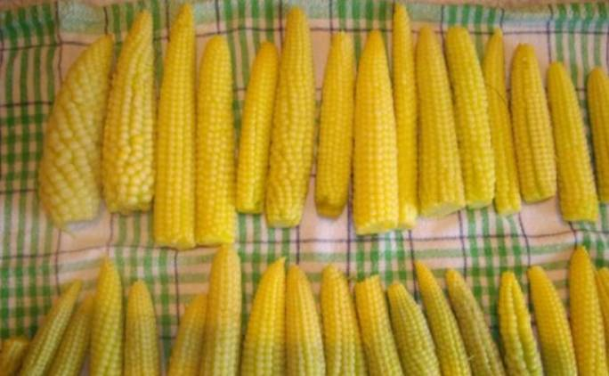 Теперь нужно полностью обсушить кукурузку.