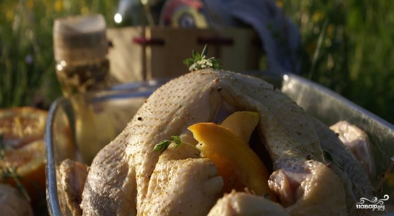 Перед запеканием на мангале, начините тушку птицы дольками апельсина (без кожуры) и яблоками.