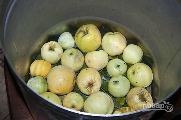 2. Следом слой яблок.