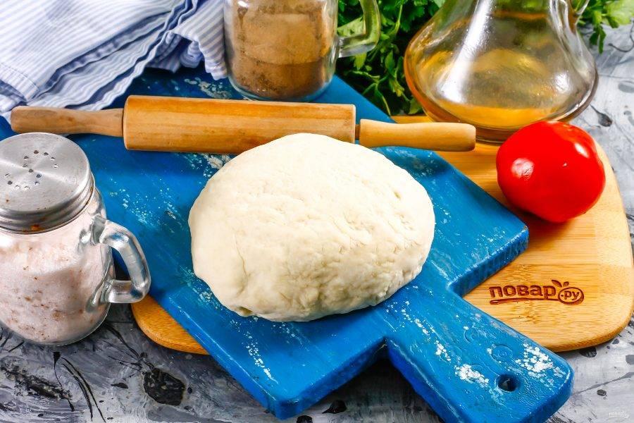 После указанного времени тщательно вымесите тесто, используя немного муки для посыпки рабочего стола. Ваше тесто для пиццы полностью готово!