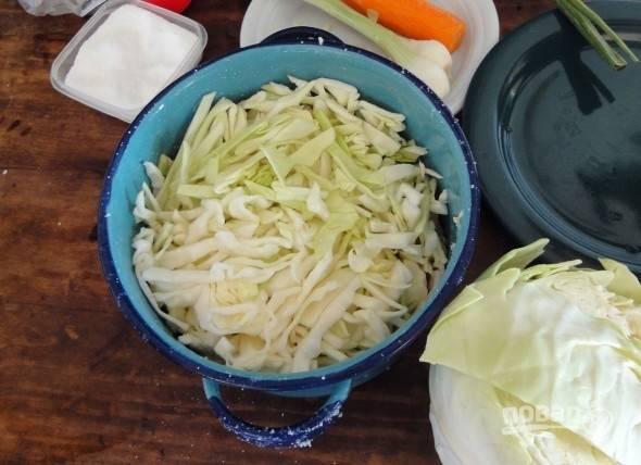 Капусту нашинкуйте довольно тонко и выложите в глубокую миску. Влейте к ней стакан холодной воды и всыпьте соль. Хорошо перемешайте все руками и отставьте пока в сторону минут на 10.