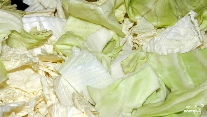 Нарубите капусту на квадратики и отправьте ее обжариваться к чесноку. Туда же добавьте очищенный и нашинкованный ножом репчатый лук.