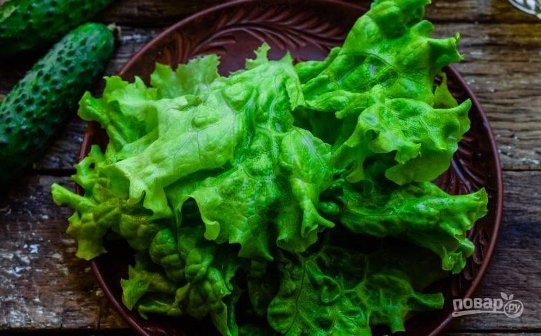 От большого пучка салата оторвите пару крупных листьев и промойте их под проточной водой. Затем обсушите бумажными полотенцами.