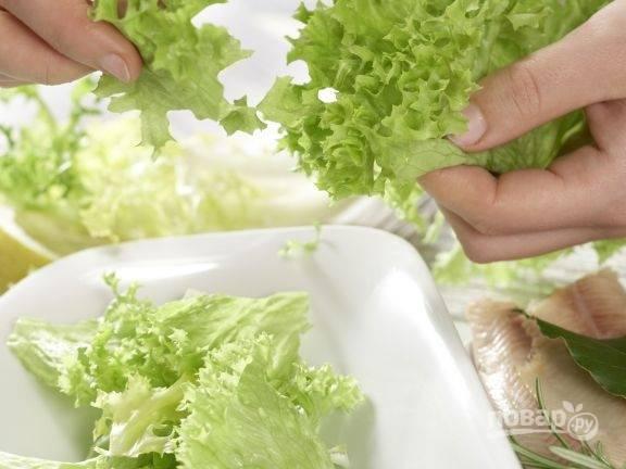 Салат промойте, обсушите и нарвите. Уложите его в салатницу.