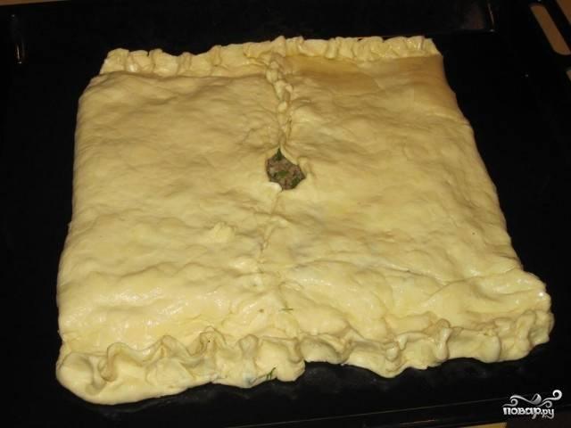 Залепите края, оставив посередине отверстие небольшое (чтобы тесто не размякло, а сок выпаривался). Яйцо взбейте, смажьте им пирог, чтобы блестел.