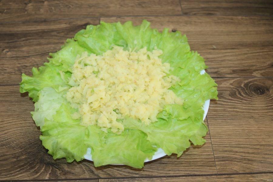 На листья салата натрите на крупной тёрке картофель, на него уложите замаринованный лук, сделайте сеточку из майонеза.