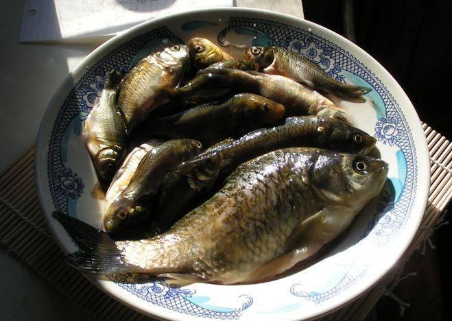Рыбу почистить от чешуи и внутренностей и хорошо промыть. Мелкую рыбу оставляем целиком, более крупную лучше нарезать на куски.