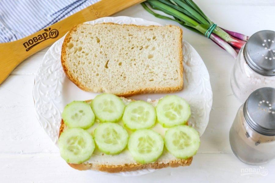 Огурец промойте в воде, срежьте с овоща кончики и кожуру. Обязательно попробуйте его на вкус, чтобы он не был горьким. Нарежьте кружочками и выложите на слой масла.
