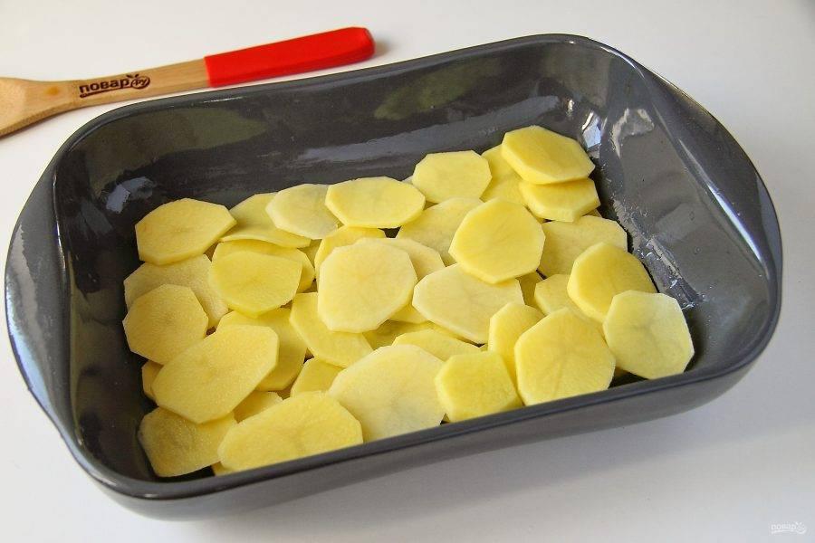 Картофель очистите и нарежьте тонкими кружками. Форму для запекания смажьте маслом и выложите первым слоем половину порции картофеля. Посолите слой по вкусу.