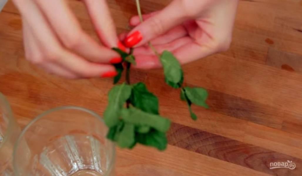 1. Для начала хорошо промойте мяту и отделите листья от пучка, добавив их в стакан. Затем нарежьте аккуратными дольками лайм и тоже положите его в стакан.