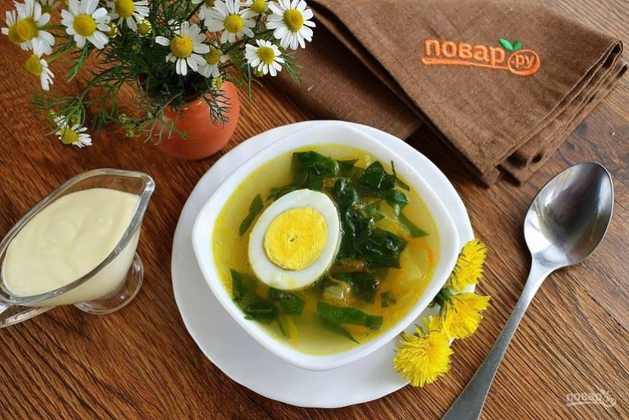 Подавайте щи из одуванчика горячими со сметаной и свежей зеленью. В каждую тарелку положите половинку вареного яйца.