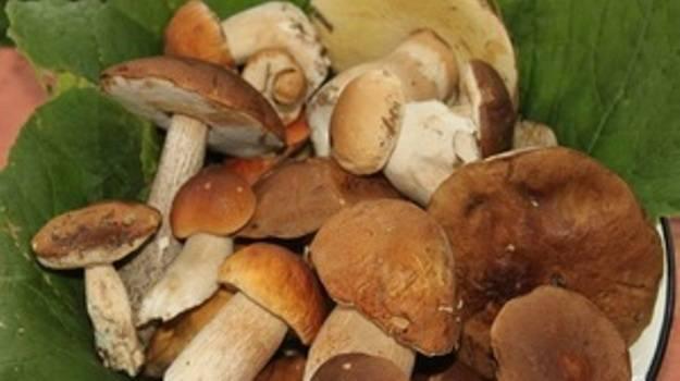 1. Отбираем самые лучшие грибы. Можете брать их любого размера. Крупные лучше нарезать на 4-6 частей, а маленькие оставьте такими.