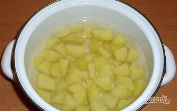 В другой кастрюле сварите очищенный, промытый и крупно нарезанный картофель. Воду подсолите. Потом картошку измельчите в пюре, добавляя отвар.