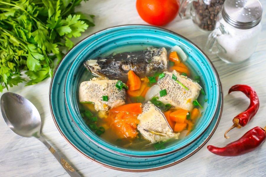 Извлеките стручок перца из бульона. Выложите части рыбы в тарелку, влейте бульон с овощами. Подайте к столу уху из щуки горячей вместе с хлебом. Блюдо можно дополнить сметаной или майонезом по вкусу. Приятного аппетита!