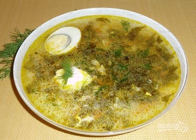 Щи готовы! К ним вы можете добавить варёное яйцо, укроп и сметану. Посолите суп по вкусу. Приятного аппетита!