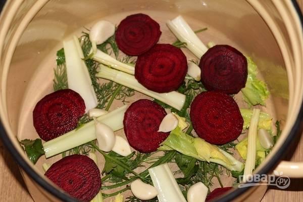 4. Измельчите стебель сельдерея. Подготовьте большую кастрюлю или другую удобную емкость. На дно выложите часть чеснока, перца, сельдерея и свеклы. Добавьте немного свежей зелени.
