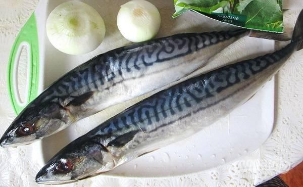 1. Рыбку вымойте, лук очистите, подготовьте все ингредиенты для рассола.