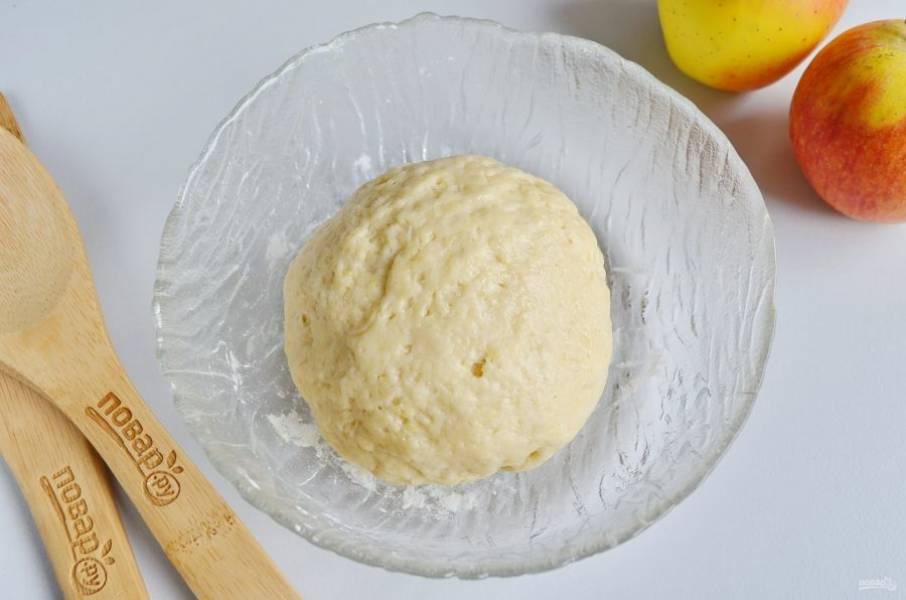 Замесите мягкое пластичное тесто.
